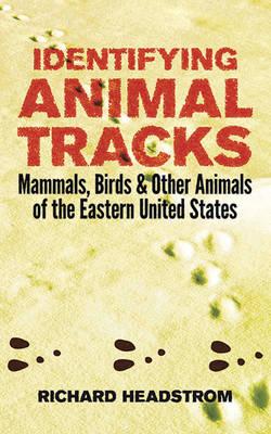 Identifying Animal Tracks