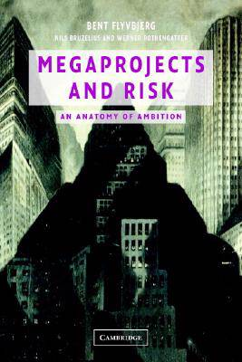 Megaprojects and Risk