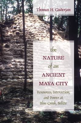 Nature of an Ancient Maya City