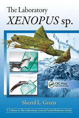 Laboratory Xenopus sp.