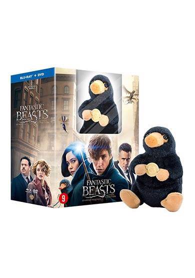 Fantastic beasts and where to find them + pluche