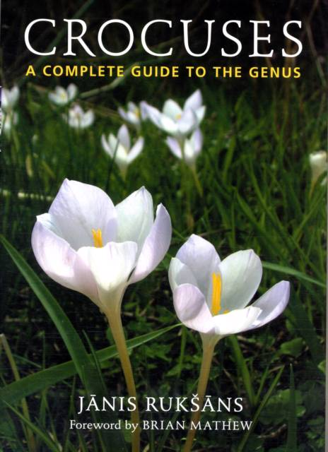 Crocuses a Compete Guide to the Genus