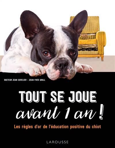 Tout Se Joue Avant 1 An ! Les Règles D'or De L'éducation Positive Du Chiot