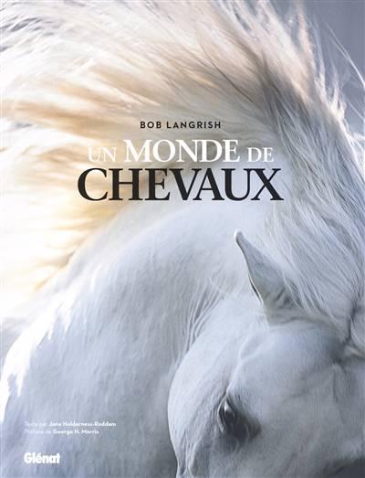 Un Monde De Chevaux