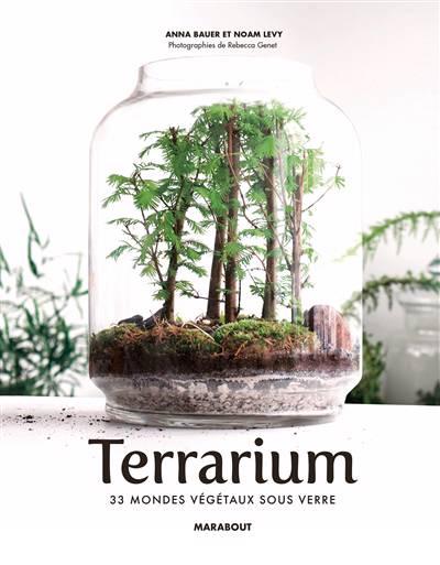 Le Guide Des Terrarium ; Tableaux Végétaux, Kokedama