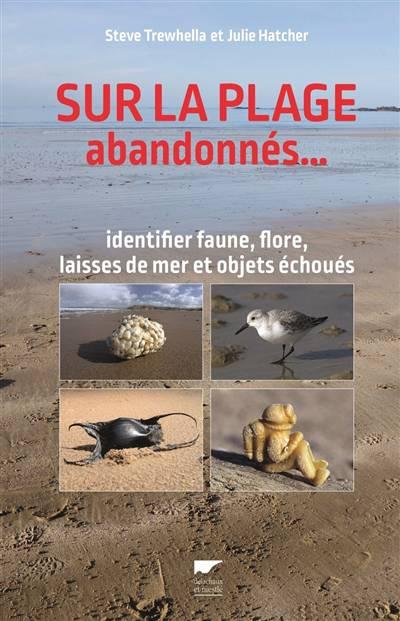 Sur La Plage Abandonnés... Identifier Faune, Flore, Laisses De Mer Et Objets échoués