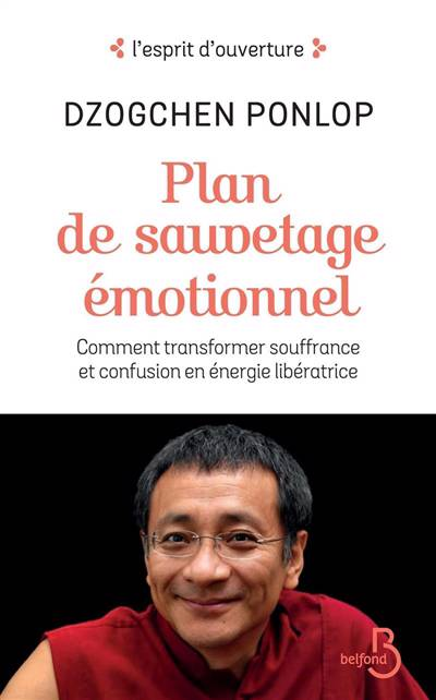 Plan De Sauvetage émotionnel ; Comment Transformer Souffrance Et Confusion En énergie Libératrice