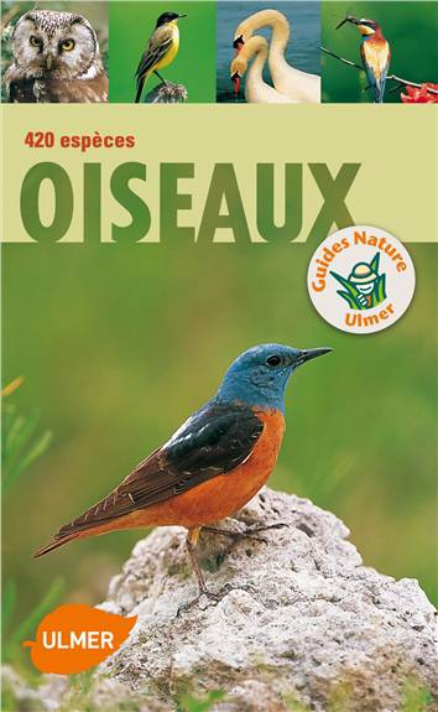 Oiseaux ; 420 Espèces