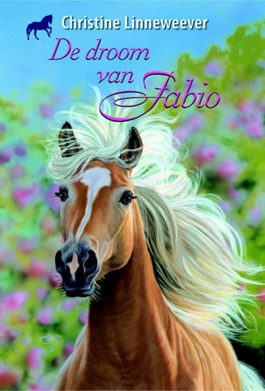 De Droom Van Fabio Standaard Boekhandel
