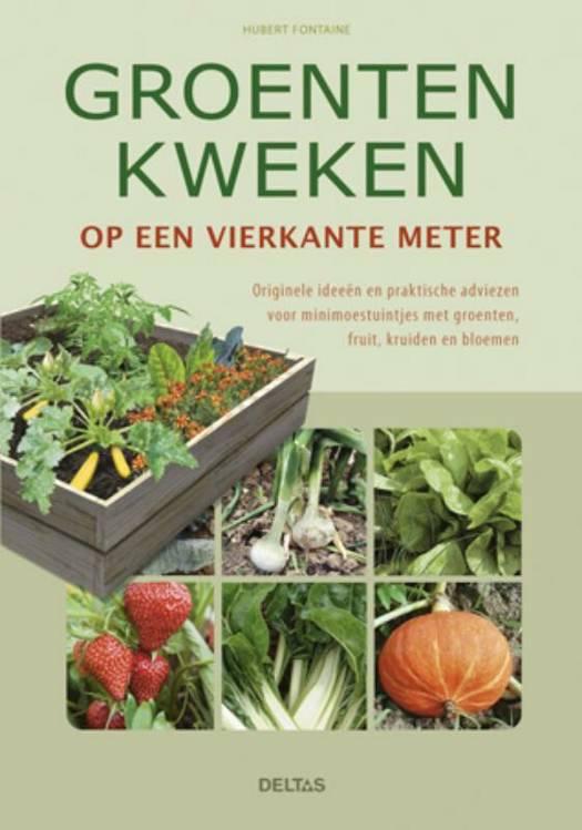Groenten kweken op een vierkante meter